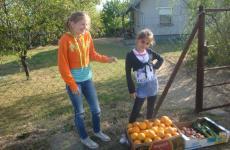 Újabb zöldség-gyümölcs adomány Tápióbicskére