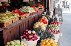 Torino lehet Olaszország első vegetáriánus városa!
